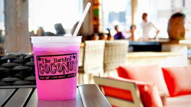 pink drink in a Busted Coconut cup